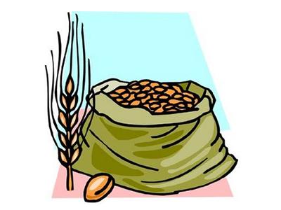 la_importancia_del_grano_del_cereal